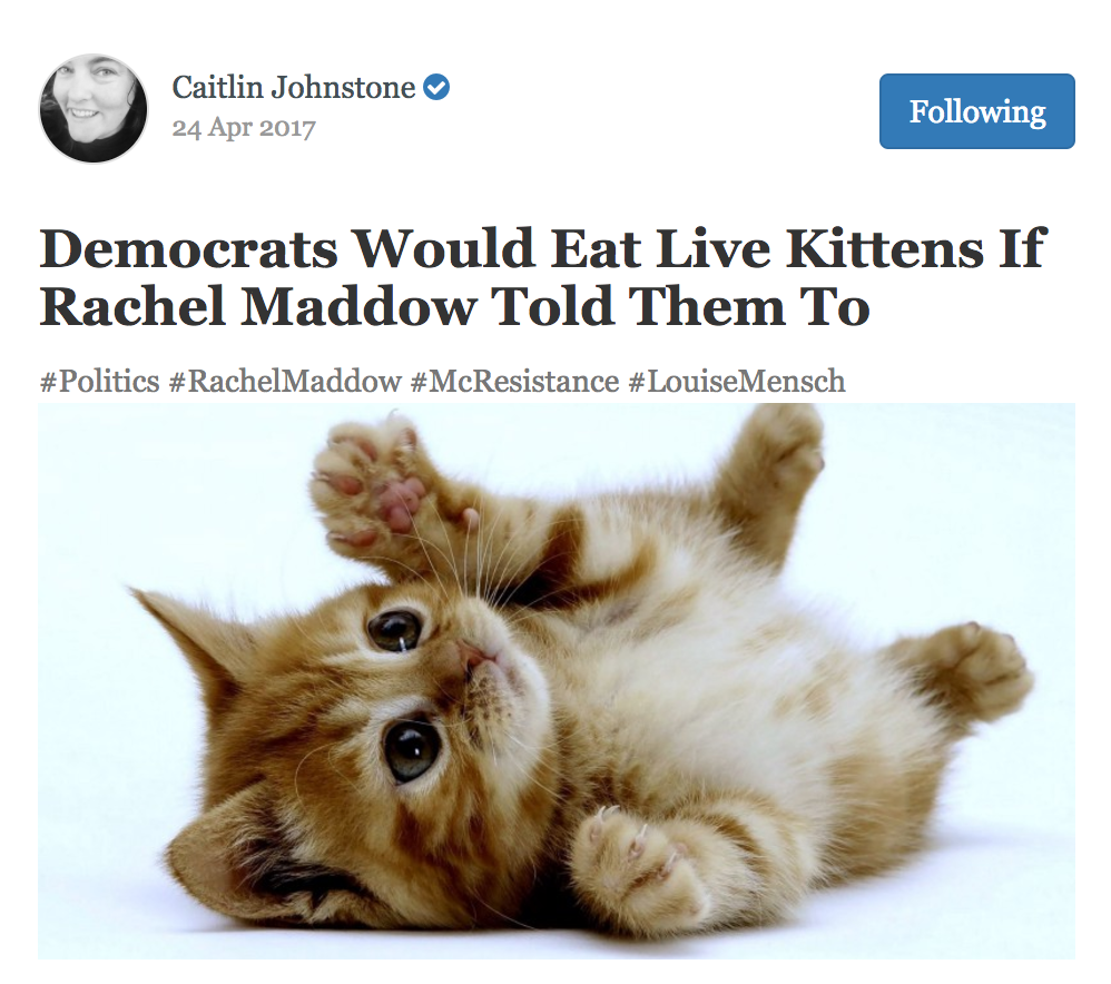 Cute kitten meme that says democrats would eat live kittens if Rachel Maddow told them to